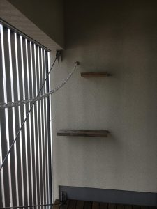 MAUHOUSE B号室_キャットステップ