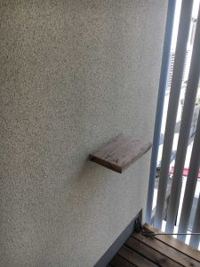 MAUHOUSE B号室_キャットステップ2